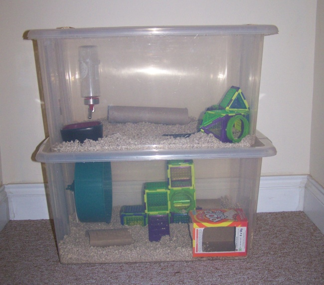 Diy bin cages for rodent pets for Diy dustbin ideas